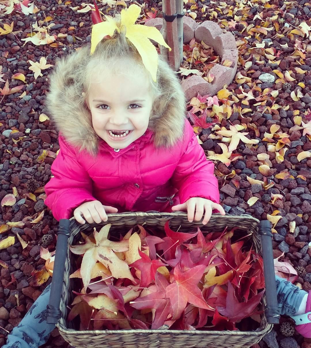 Atelier ramassage de feuilles mortes devant la maison du voisinhellip